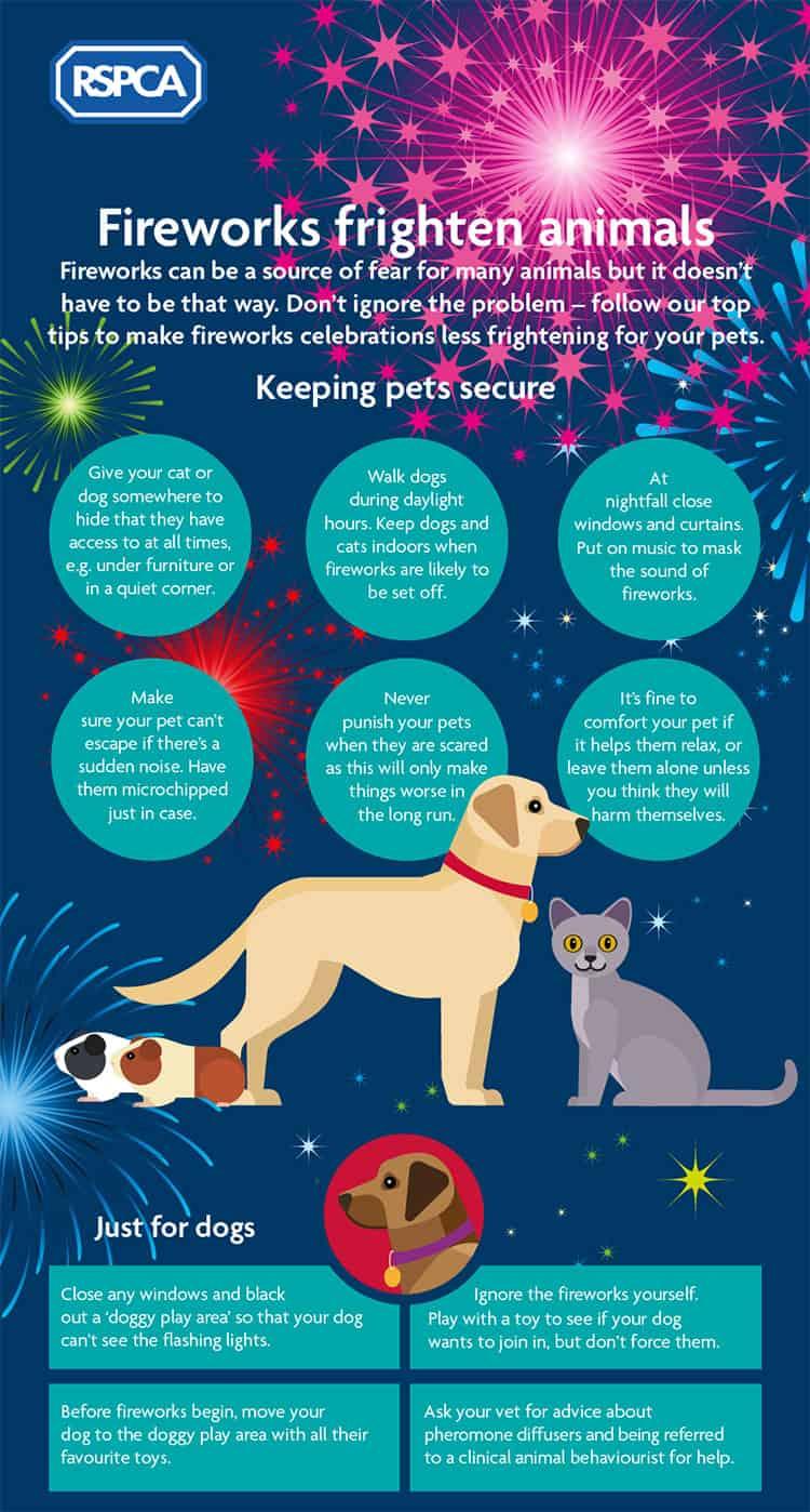firework guide