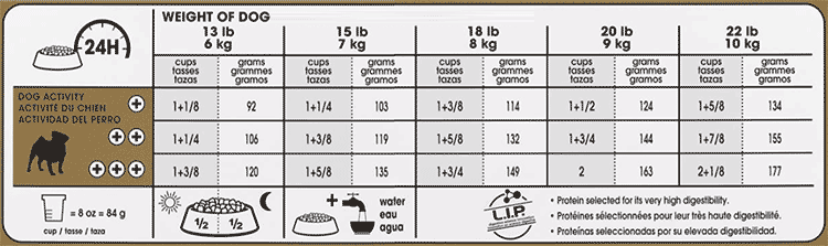 adult pug feeding times and amounts