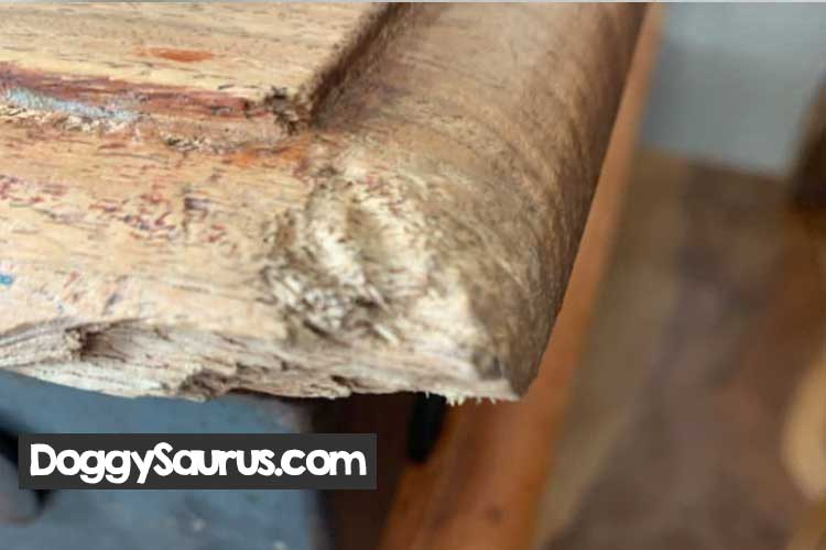 how to stop a puppy from chewing on wood trim