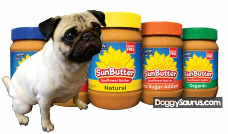 Can dogs eat sunflower seed butter