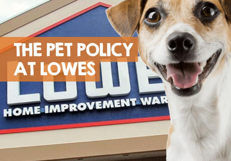 lowes pet policy
