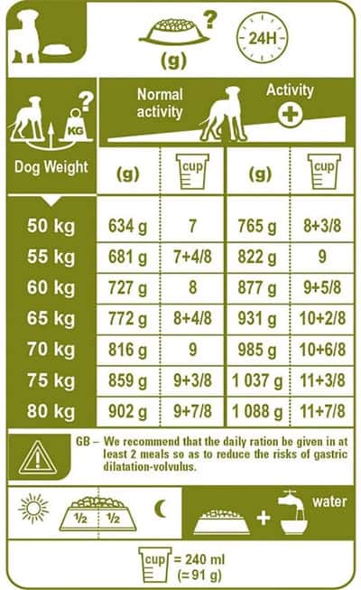 How Much Does a Great Dane Eat Per Day & Month? (Feeding ...