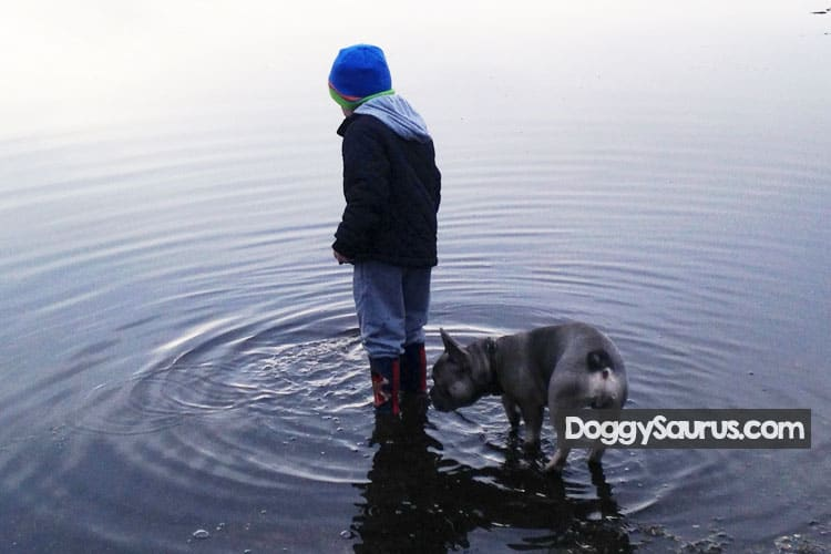 kid and dog in lake